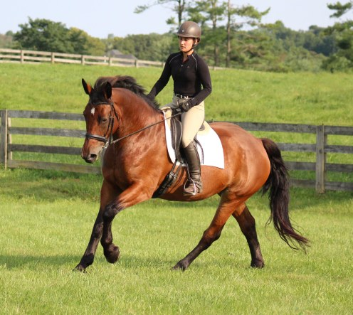 Topsy Canter2