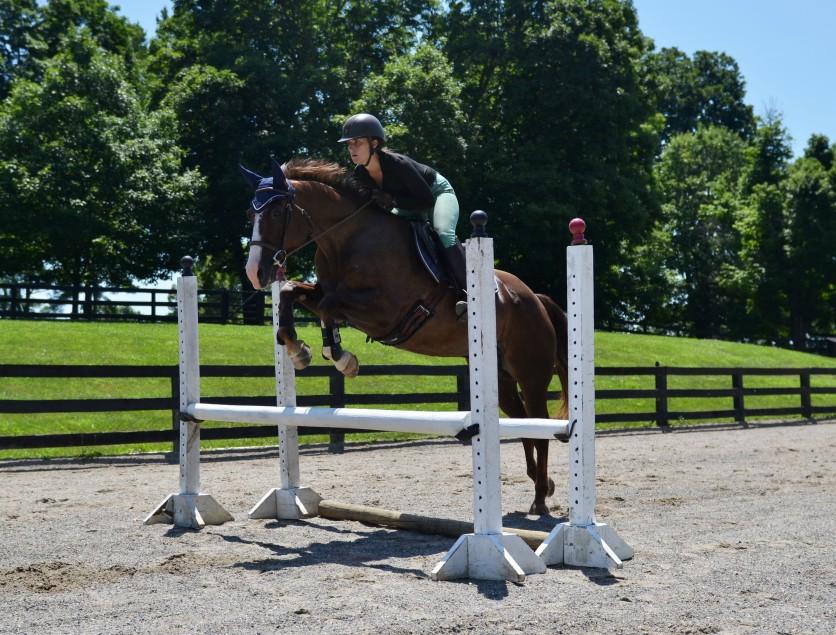 Winston Jumping